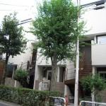 東尾久6丁目アパートB棟【202】