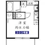303号室(間取)
